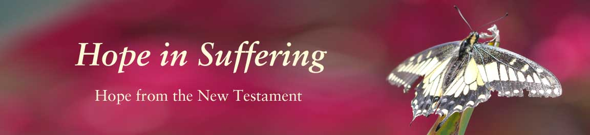 Hope in Suffering: New Testament
