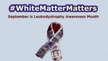 White Matter Matters Photo copy